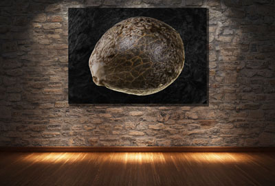 Visualization- art-stone wall-4-small