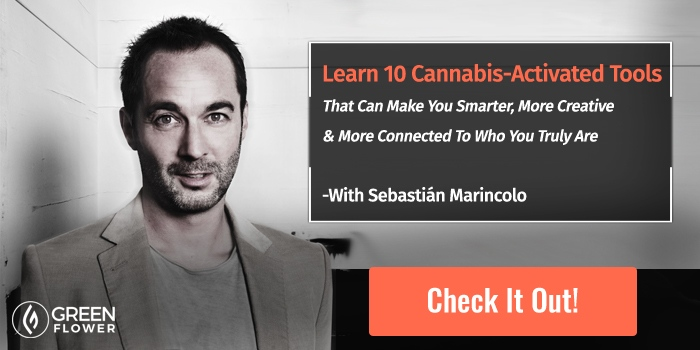 new online course about how to use cannabis for mind-enhancments
